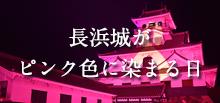 長浜城がピンク色に染まる日